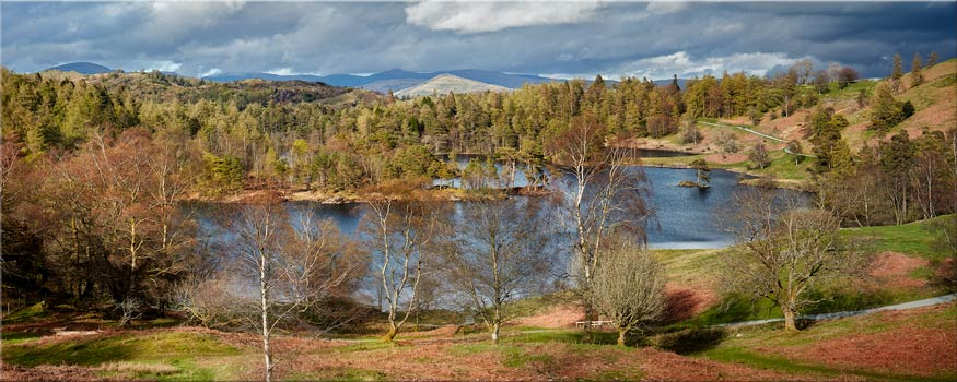 Tarn Hows Spring Sunshine - Framed Print with Mount