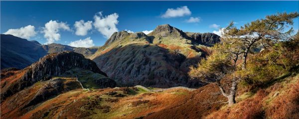 Langdales and Side Pike - Canvas Print