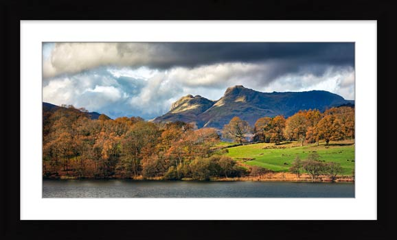 Golden Trees of Langdale - Framed Print with Mount