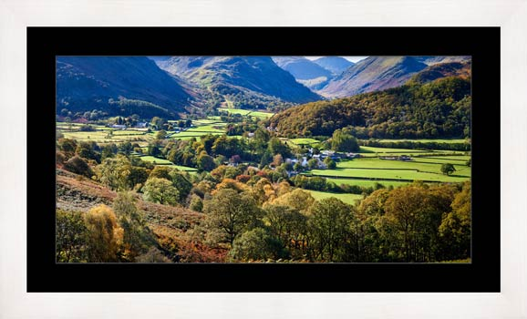 Trees of Borrowdale - Framed Print with Mount