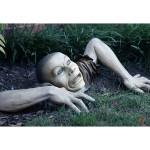 Garden Zombie