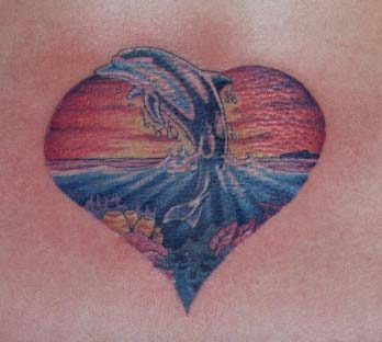 Dolphin tattoo new zealand