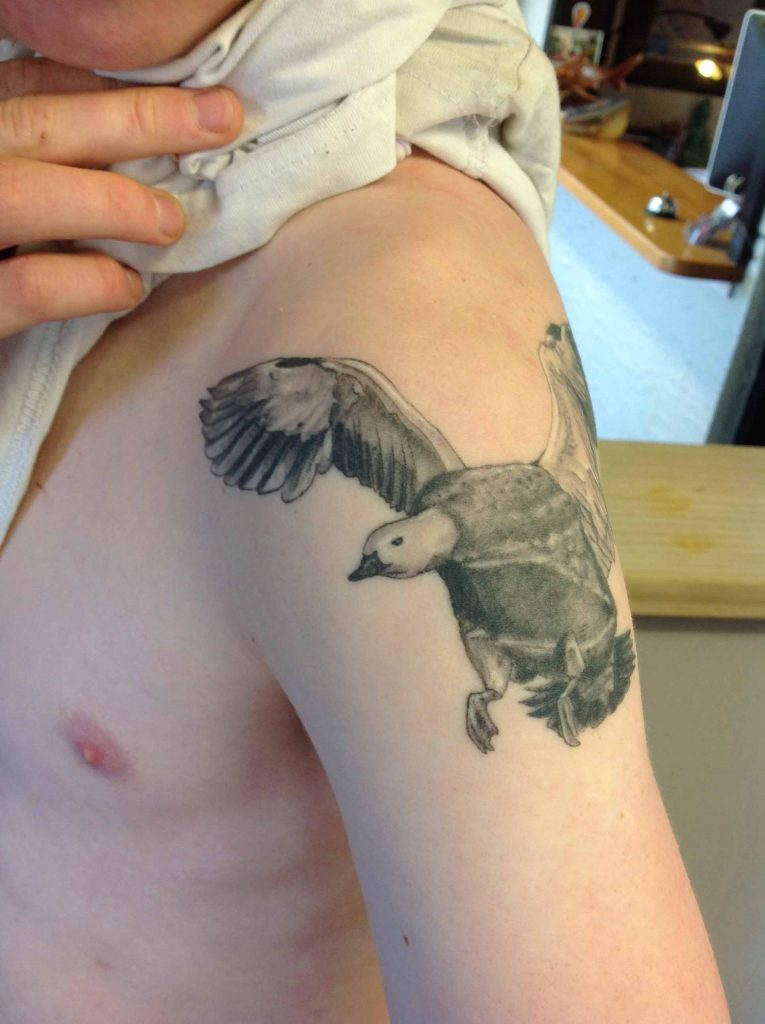 Duck Tattoo New Zealand