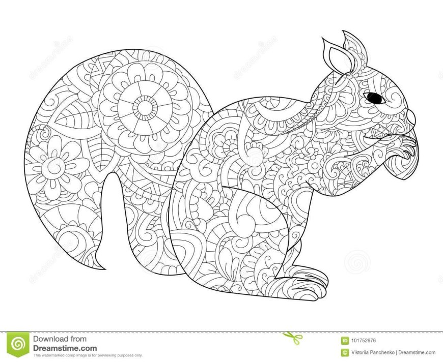 Acorn Coloring Pages Squirrel And Acorn Coloring Pages Beautiful Squirrel With Nut