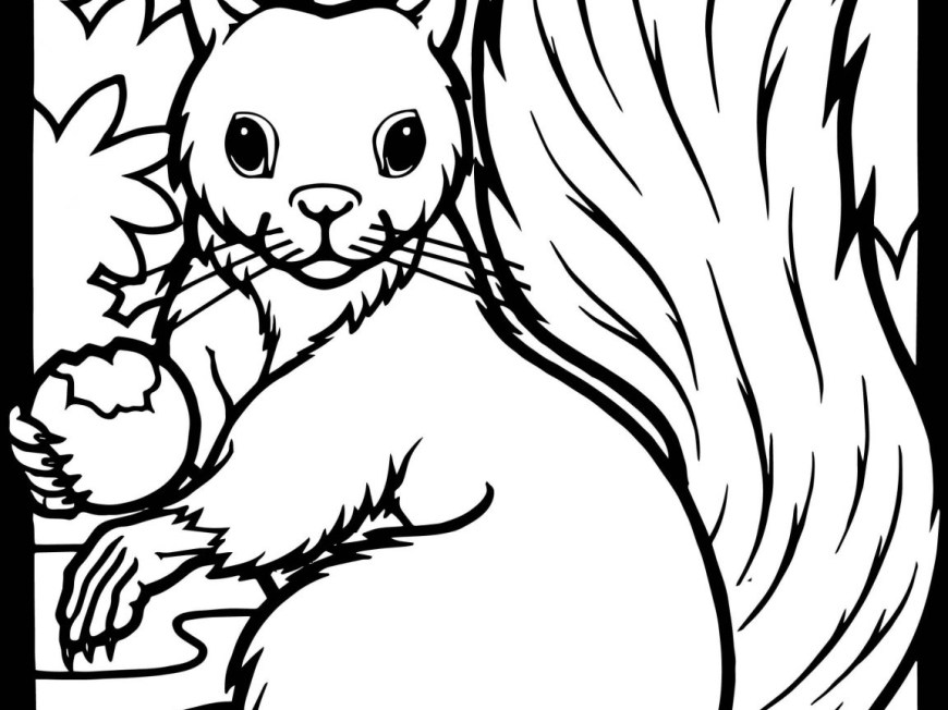 Acorn Coloring Pages Squirrel Coloring Pages Squirrels To Color Freeintable Of