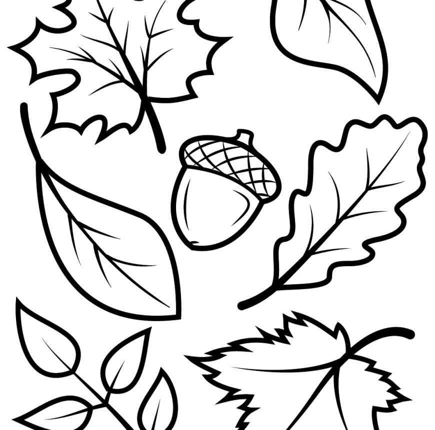 Acorn Coloring Pages Surprising Free Printable Coloring Pages Fall Season Adult U Page