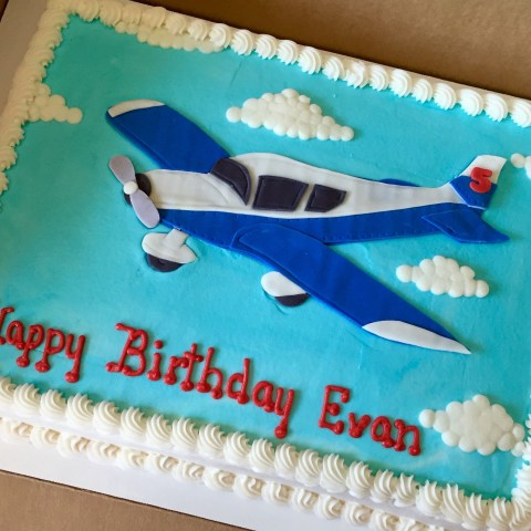 Airplane Birthday Cake Airplane Cake Sheetcakesdonthavetobeboring Sheetcakes