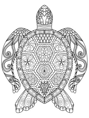 Animal Coloring Pages Adult Coloring Pages Animals Best Coloring Pages For Kids
