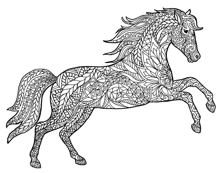 Animal Coloring Pages Detailed Animal Coloring Pages With Intricate Animals Colouring