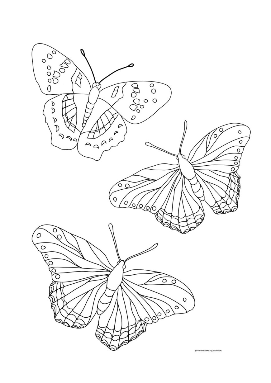 Butterflies Coloring Pages Butterfly Coloring Pages
