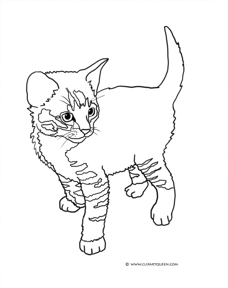 Cute Cat Coloring Pages Cat Coloring Pages