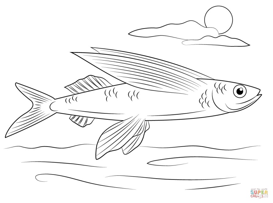 Fish Coloring Pages Flying Fish Coloring Page Free Printable Coloring Pages
