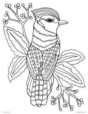 Free Animal Coloring Pages Coloring Pages