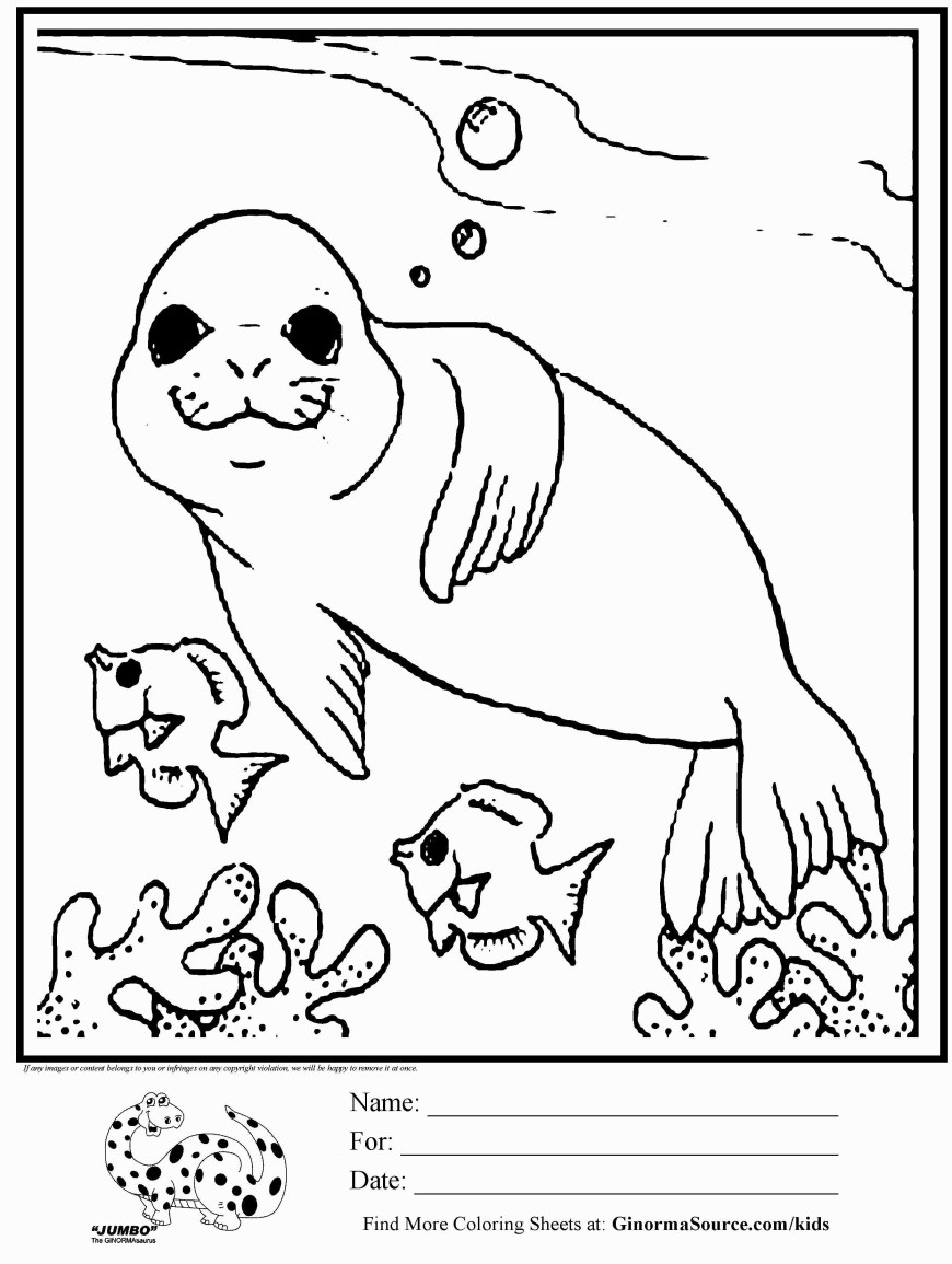 Free Animal Coloring Pages Free Animal Coloring Pages For Kids