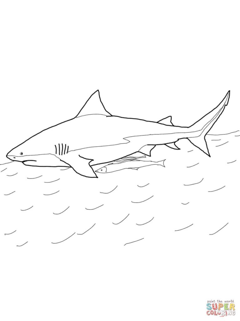 Great White Shark Coloring Pages Sharks Coloring Pages Free Of Great White Shark Colorin Gerrydraaisma