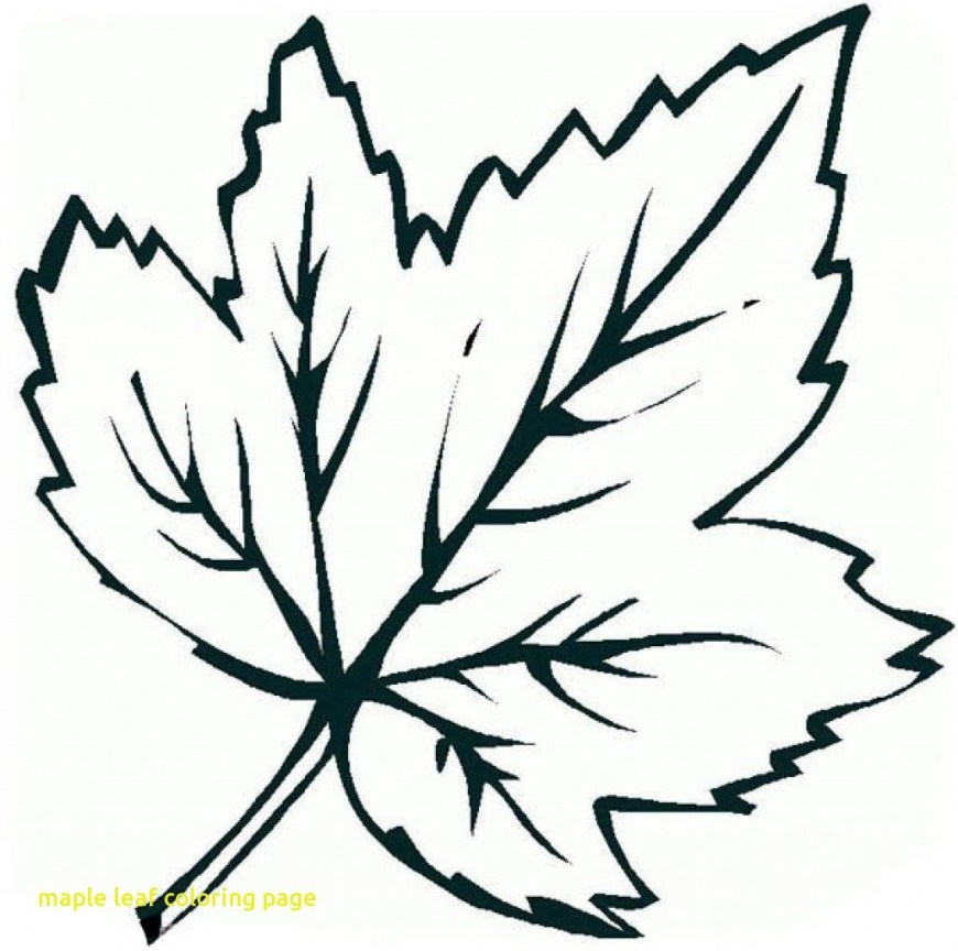 Leaf Coloring Pages Leaf Coloring Page Coloring Pages For Children