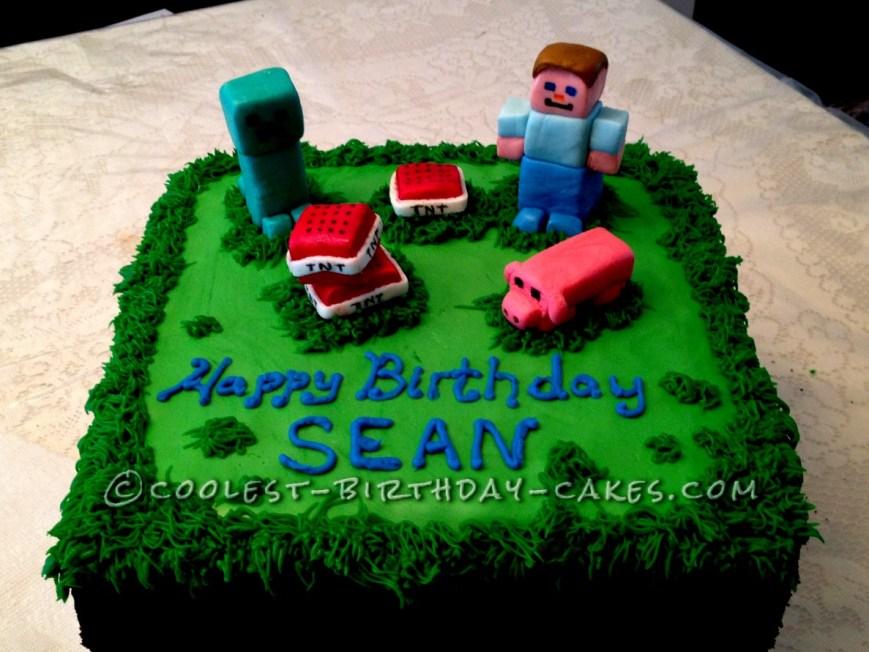 Minecraft Birthday Cake Ideas Minecraft Birthday Cakes For Sale Cake Ideas Easybirthdaycake