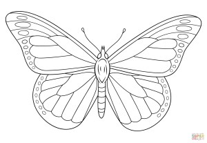 Monarch Butterfly Coloring Page Monarch Butterfly Coloring Page Free Printable Coloring Pages