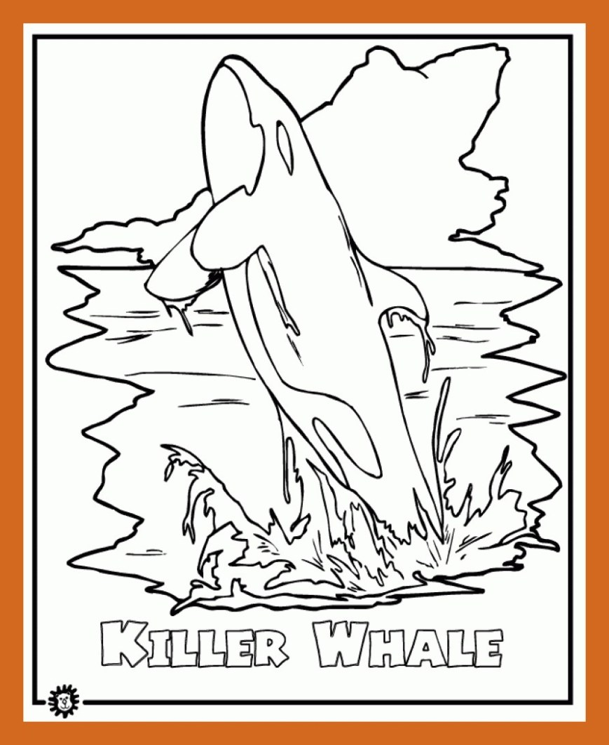 Orca Coloring Pages Inspiring Killer Whale Mammals Jumping Orca Coloring Pages