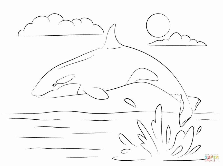 Orca Coloring Pages Orca Coloring Pages Printable Wildlife Page Chronicles Network
