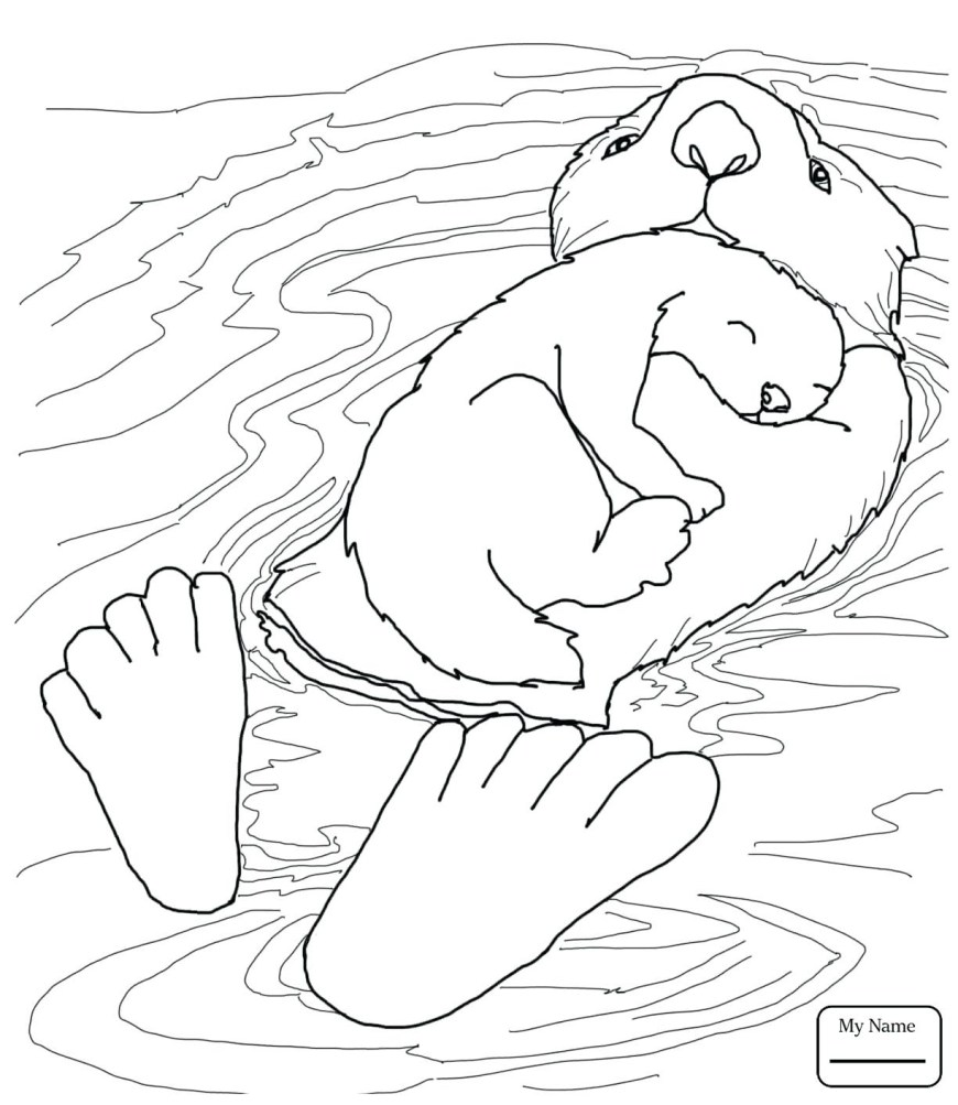 Otter Coloring Pages Sea Otter Coloring Page New Collection Otter Coloring Pages Cool