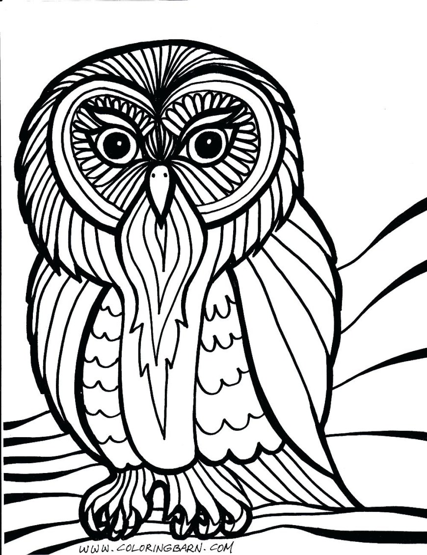 Owl Coloring Pages For Adults Best Owl Coloring Pages For Adults Free Printable Com Endear Hard