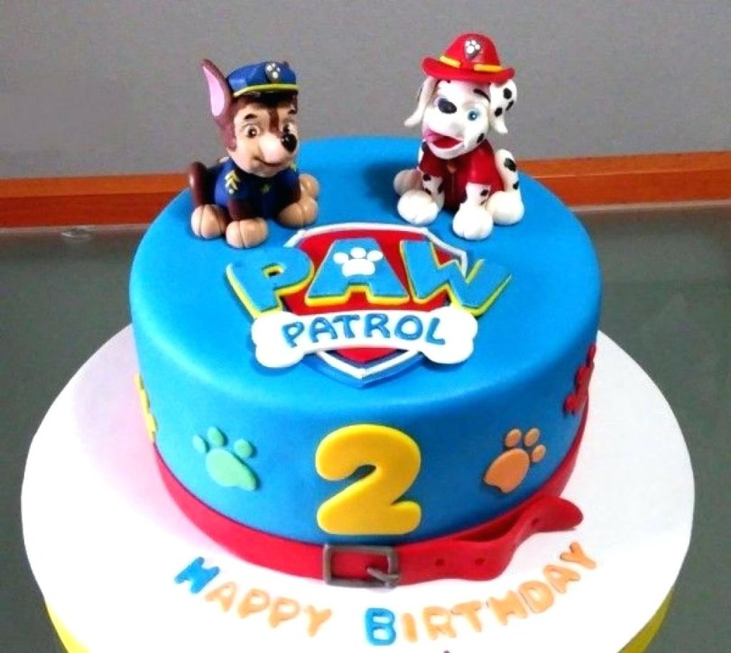 Paw Patrol Birthday Cake Ideas Paw Patrol Cake Ideas Easy