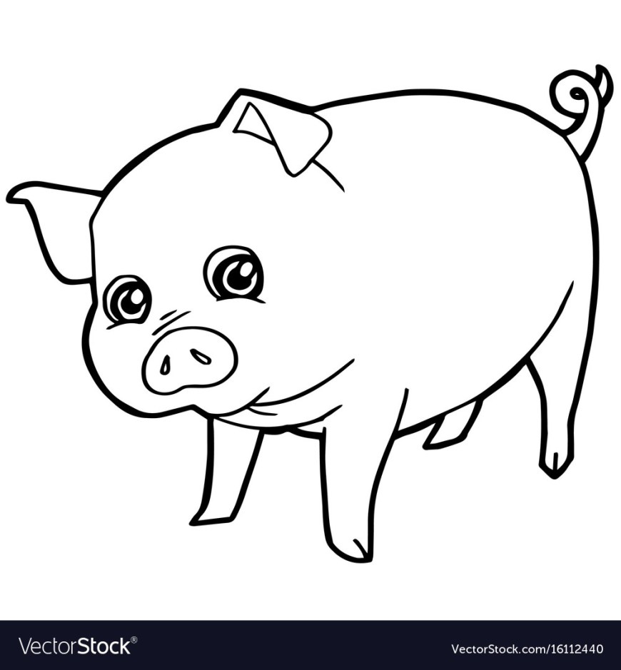 Pig Coloring Page Cartoon Cute Pig Coloring Page Royalty Free Vector Image
