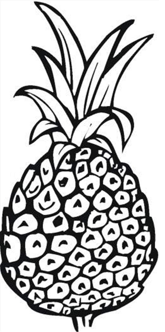 Pineapple Coloring Page Free Printable Pineapple Coloring Pages For Kids