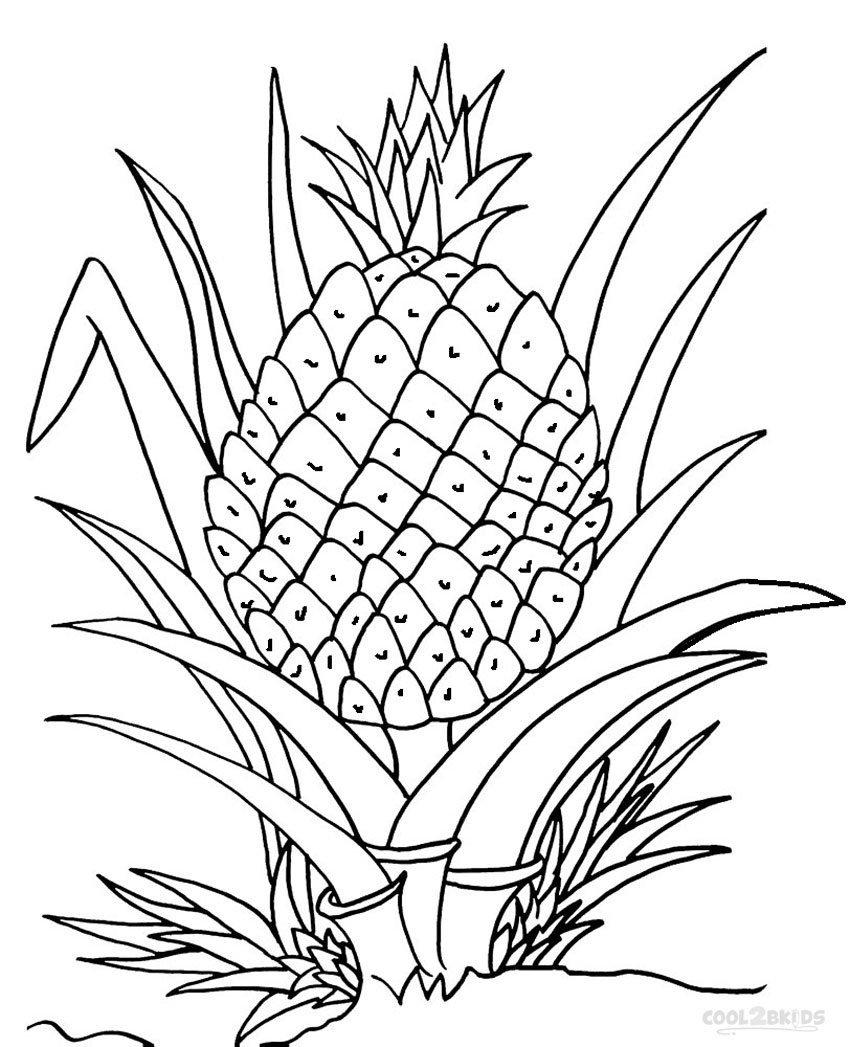 Pineapple Coloring Page Printable Pineapple Coloring Pages For Kids Cool2bkids