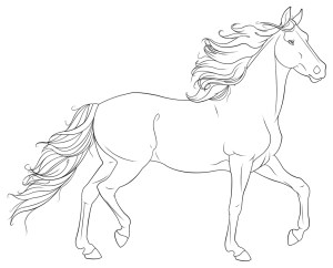 Printable Horse Coloring Pages Coloring Page Incredible Printable Horse Coloring Pages