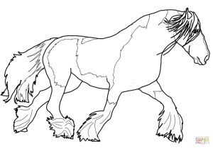 Printable Horse Coloring Pages Gypsy Vanner Horse Coloring Page Free Printable Coloring Pages