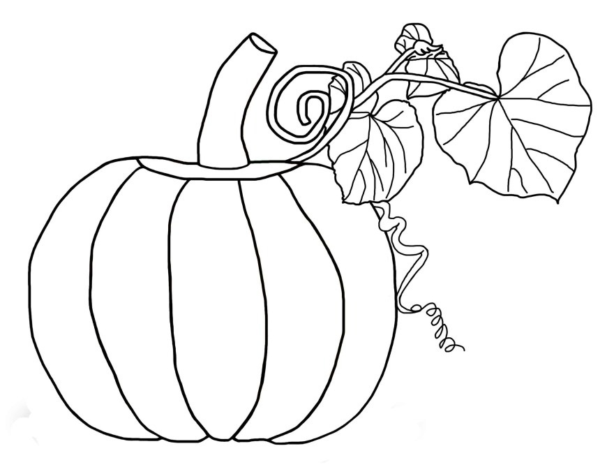Pumpkin Coloring Pages Free Pumpkin Coloring Pages For Kids