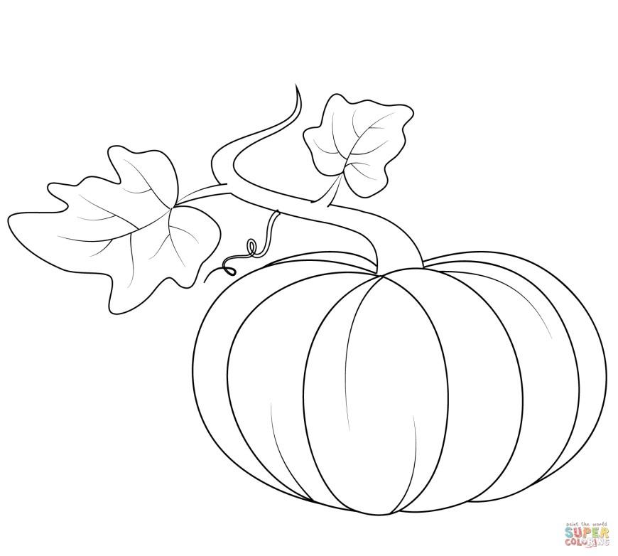 Pumpkin Coloring Pages Pumpkin Coloring Pages Pumpkins Free 16121449 Attachment