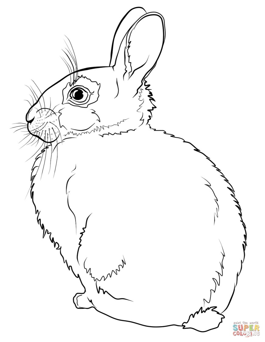 Rabbit Coloring Pages Rabbits Coloring Pages Free Coloring Pages Bei Hasen Malvorlage