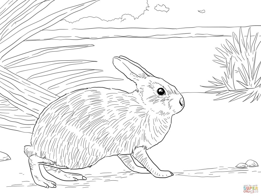 Rabbit Coloring Pages Rabbits Coloring Pages Free Coloring Pages