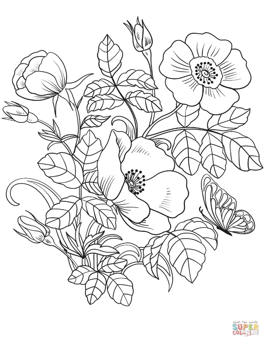Spring Coloring Page Spring Flowers Coloring Page Free Printable Coloring Pages