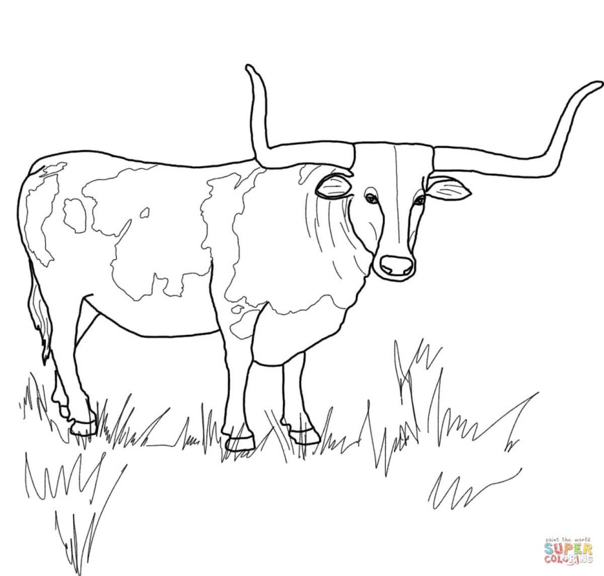 Texas Coloring Pages Texas Longhorn Steer Coloring Page Free Printable Coloring Pages