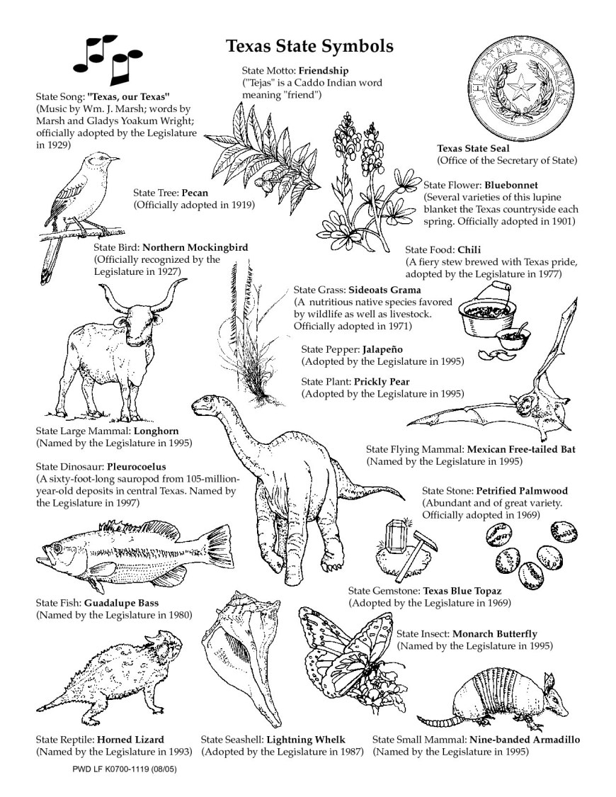 Texas Coloring Pages Texas Symbols Coloring Pages Beautiful Texas Symbols Worksheets