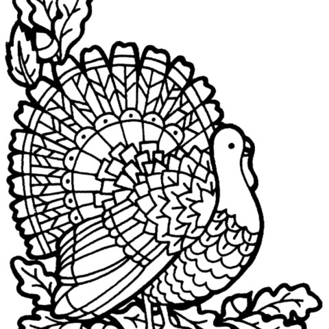 Turkey Coloring Pages Printable Turkey Coloring Page A To Z Teacher Stuff Printable Pages And