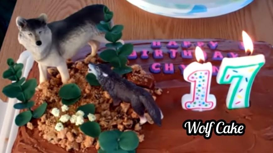 Wolf Birthday Cake My Birthday Cake Wolf Cake Youtube