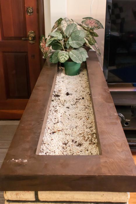 The original planter