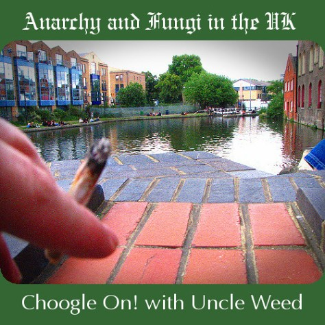 Anarchy and Fungi in the UK – Choogle On! #42