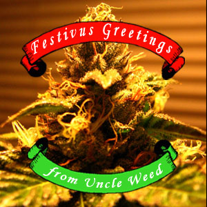Mountain High Festivus Greetings from Uncle Weed – Choogle On Bonus