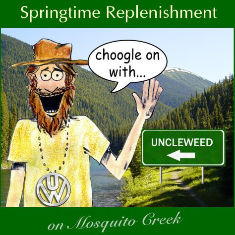Springtime Replenishment on Mosquito Creek – Choogle on #66