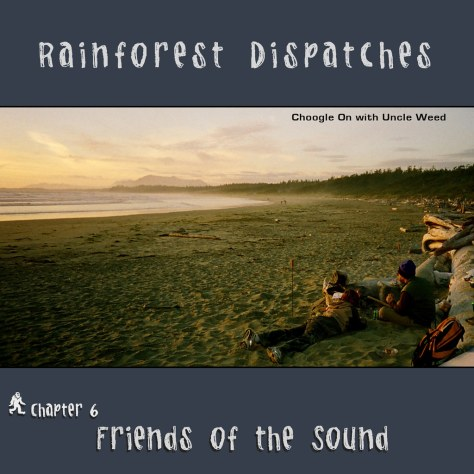 Friends of the Sound – Rainforest Dispatches, chapter 6/9