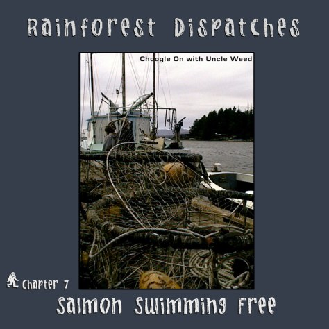 Salmon Swimming Free – Rainforest Dispatches, chapter 7/9