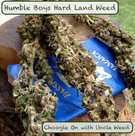 Humble Boys Hard Land Weed