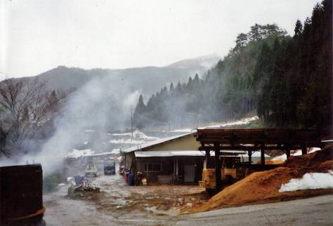 Modernity and magical realism in rural Japan