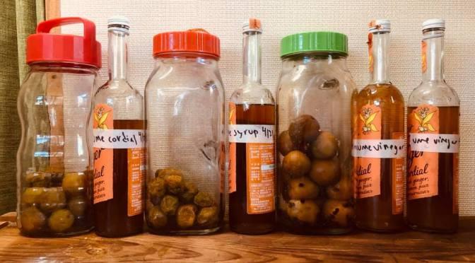 Kitchen: Ume vinegar, syrup & cordial (bottling etc)